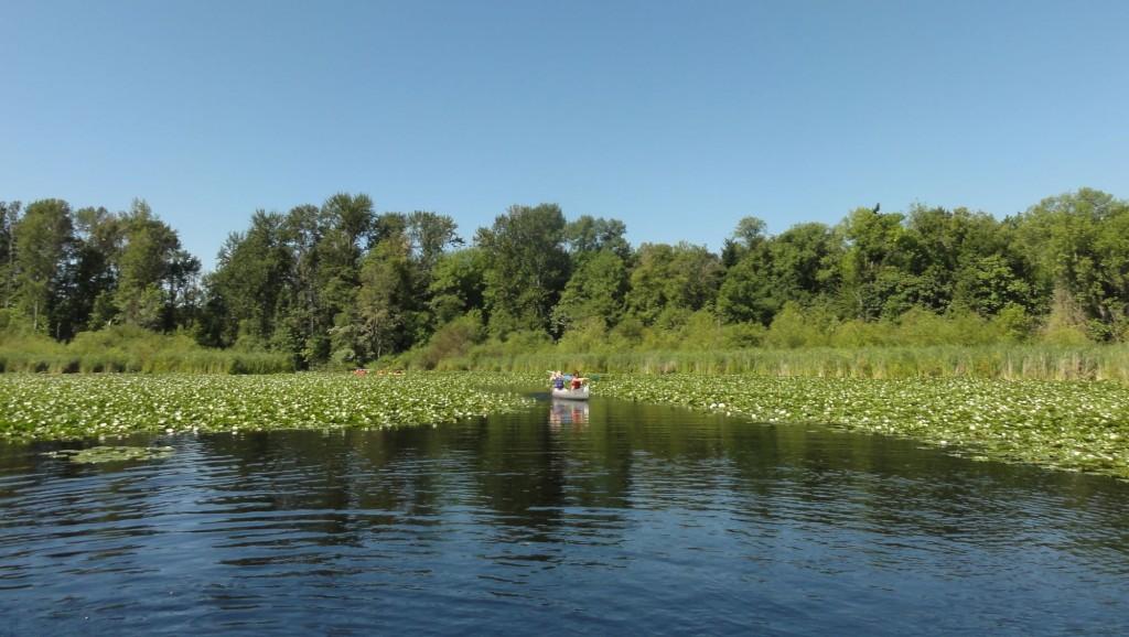 Canoe in Arboretum - 5